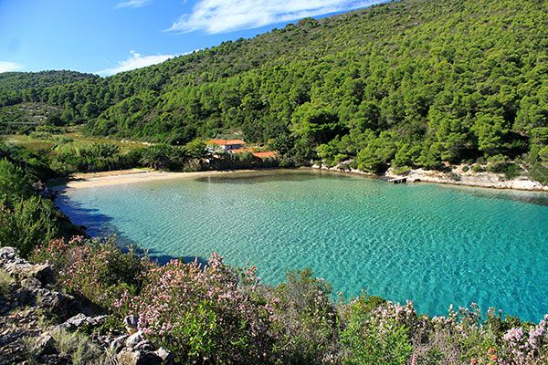 Best Beaches in Croatia in category summer in croatia newsfun